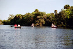 Canoeing the South Prong
