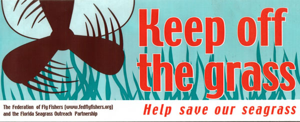Help save our seagrasses